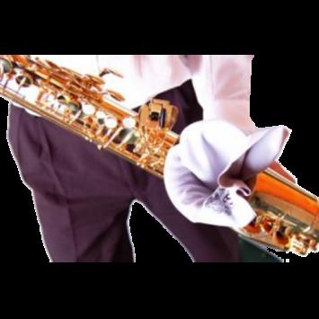 """Wischer """"BG"""" für Alt-Saxophon, A 30"""