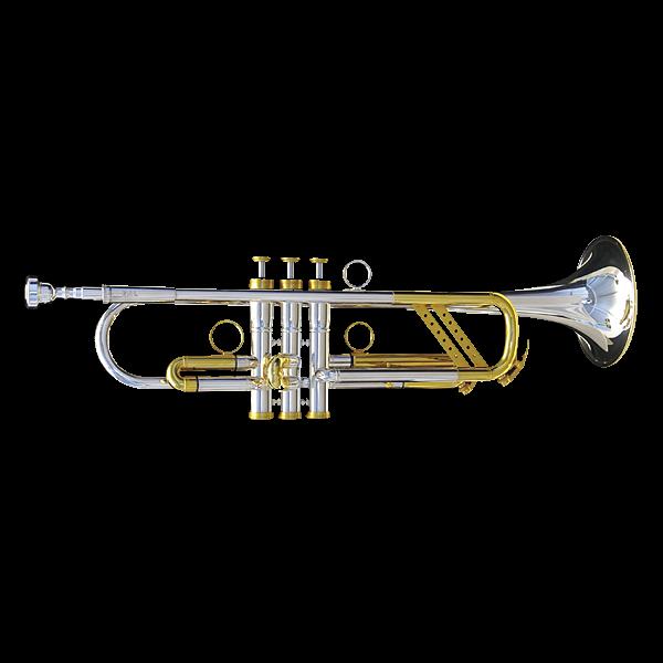 Ralf Radermacher HANDMADE B-Trompete 210 GOLD Heavy