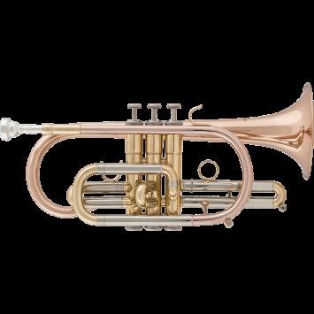 RRB B-Kornett 516-1, lackiert