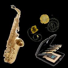 YANAGISAWA A-WO1 Professional Altsaxophon Reinigungs-Set mit Blatt-Etui