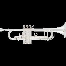 A&S B-Trompete ATR-8837S Terra