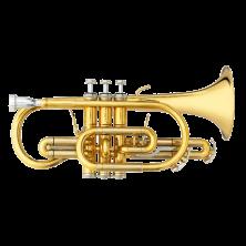 "B&S B-Kornett 3142/2-GL ""Brochon"""